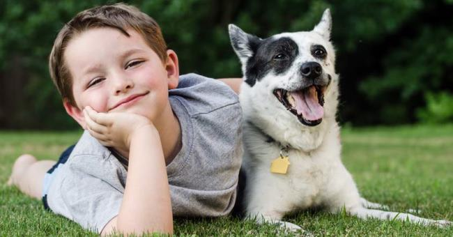 Green Pest Control - Kid and Pet Friendly Residential Pest Exremination - Portland OR Vancouver WA